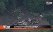 ช่วยฝูงวัวจากน้ำท่วมในสหรัฐฯ
