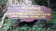 พื้นที่ป่าละอูเข้าสู่ภาวะปกติ นักท่องเที่ยวชาวไทยเข้าพื้นที่ฟรี ในวันแม่แห่งชาติ