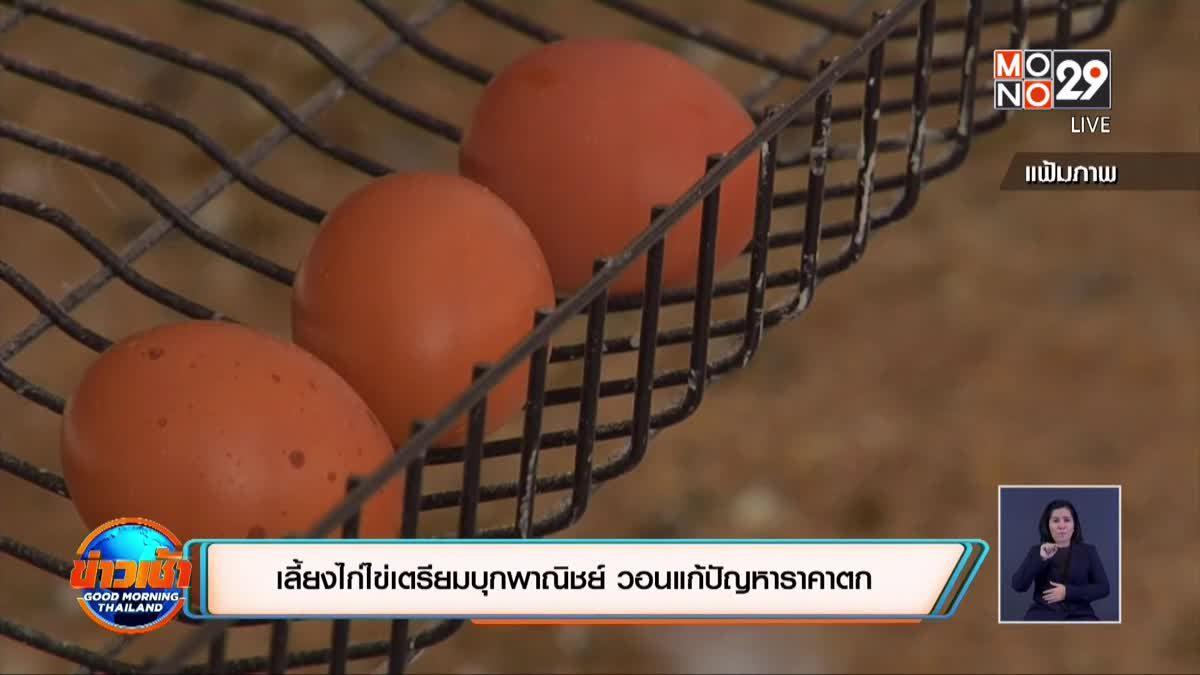 ผู้เลี้ยงไก่ไข่เตรียมบุกพาณิชย์ วอนแก้ปัญหาราคาตก