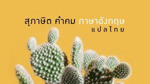 สุภาษิต คำคมภาษาอังกฤษ แปลไทย