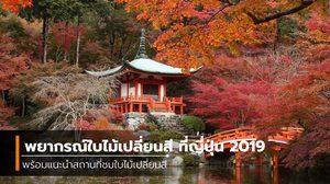 พยากรณ์ใบไม้เปลี่ยนสี ที่ญี่ปุ่น 2019 พร้อมแนะนำสถานที่ชมใบไม้เปลี่ยนสี