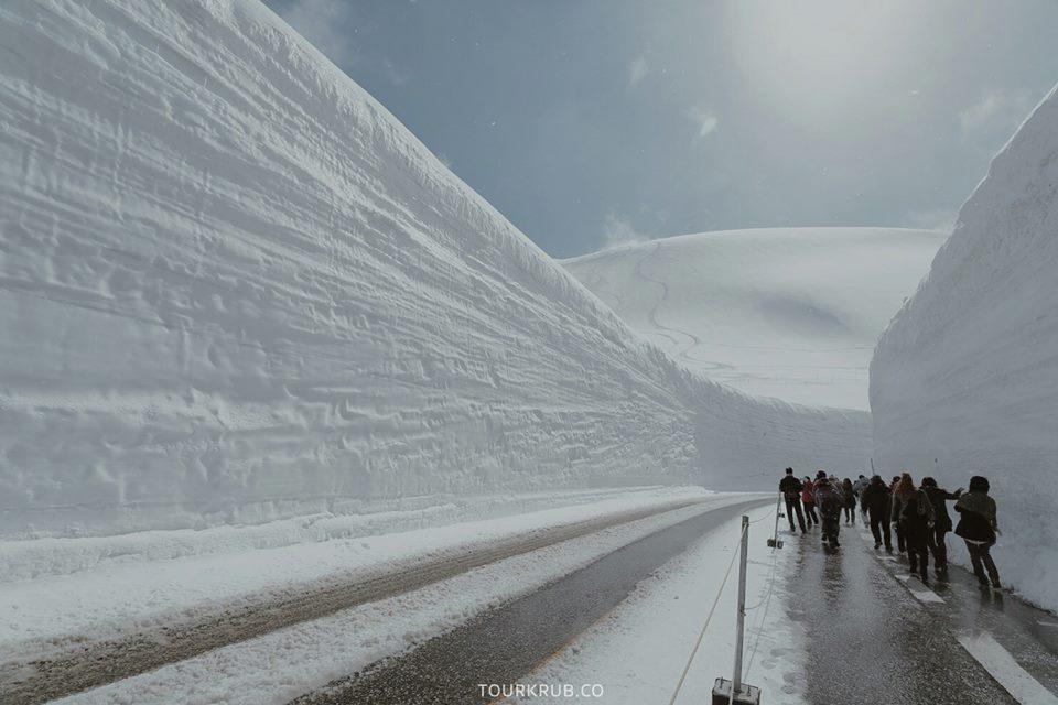 กำแพงหิมะทาเทยาม่า (Tateyama Snow Corridor)