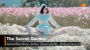 The Secret Garden ทุ่งดอกไม้เขาใหญ่ เปิดใหม่ ต้องตามไปฟิน เช็คอินหน้าหนาวนี้