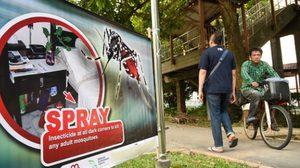 สิงคโปร์ติดเชื้อซิกาเพิ่ม 15 คน รวมผู้ติดเชื้อ 56 ราย