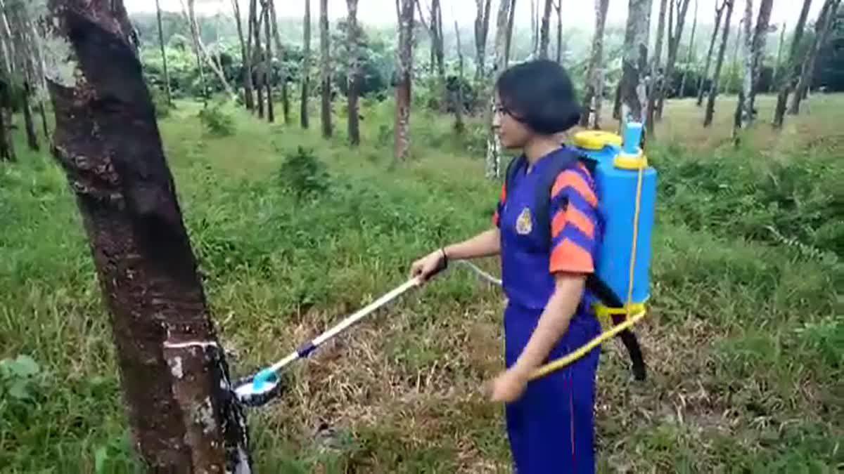เก่งมากลูก! เด็กม.ปลาย ประดิษฐ์ถังโยกเก็บน้ำยางพารา จากถังฉีดยาฆ่าแมลง