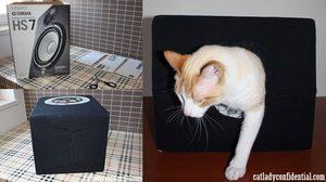 วิธีสร้าง บ้านแมว ภายใน 5 นาที จากของเหลือใช้ในบ้าน ด้วยงบ 0 บาท