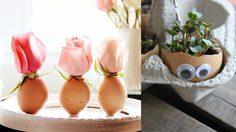 เปลือกไข่ นำมาแต่งบ้านให้สวยได้มากกว่าที่คิด