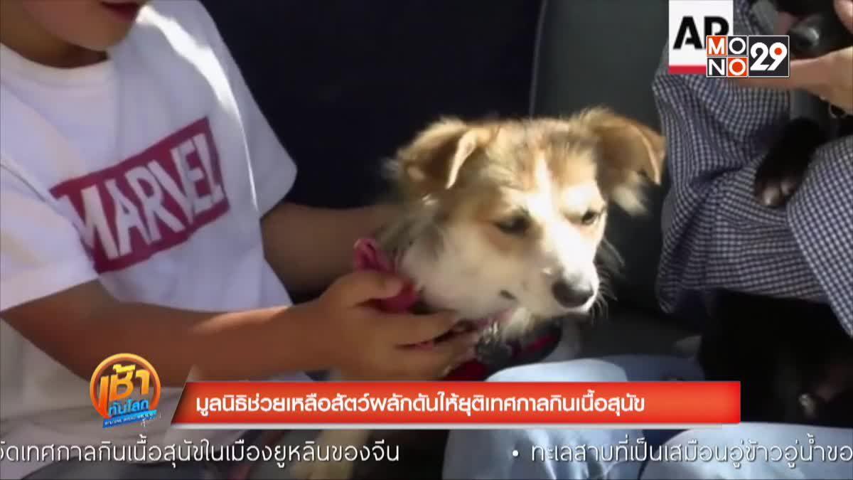 มูลนิธิช่วยเหลือสัตว์ผลักดันให้ยุติเทศกาลกินเนื้อสุนัข