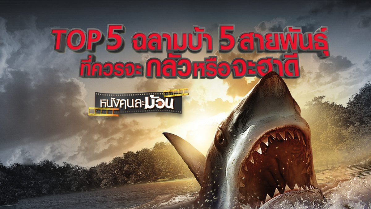 TOP5 ฉลามบ้า 5 สายพันธุ์ ที่ควรจะกลัวหรือจะฮาดี