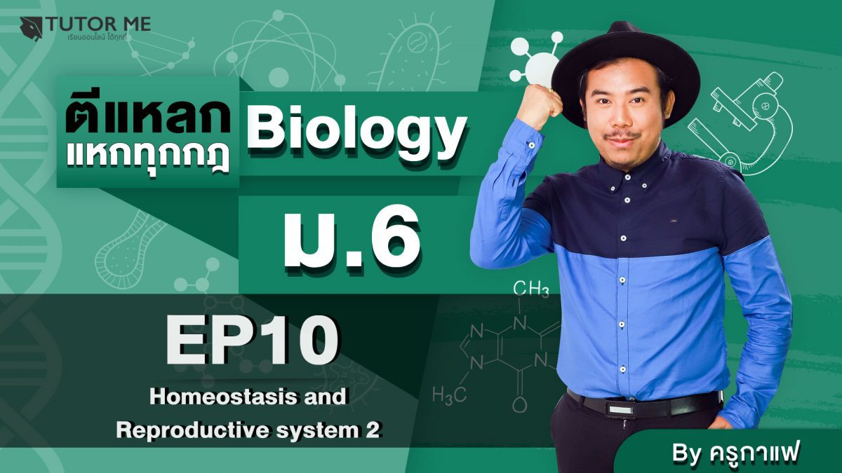 EP 10 Homeostasis amd Reproductive system 2