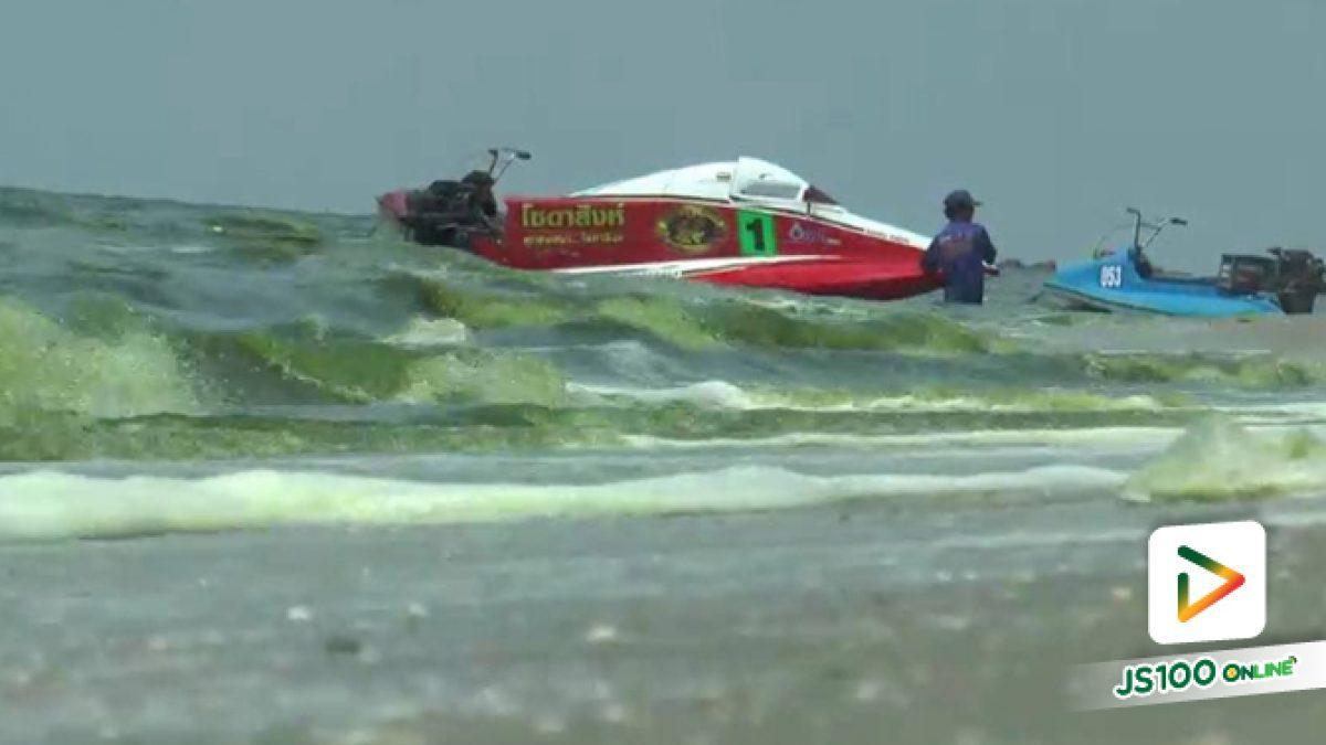 นักท่องเที่ยวตกใจแพลงก์ตอนบลูมที่ชายหาดบางแสน น้ำทะเลเป็นสีเขียวมีกลิ่นเหม็น คาด 1-2  วันจะกลับสู่สภาวะปกติ