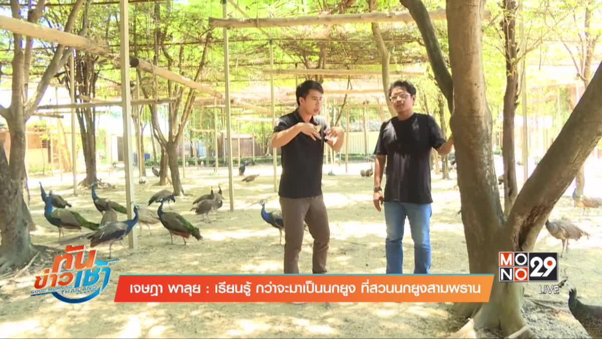 เจษฎาพาลุย : เรียนรู้ กว่าจะมาเป็นนกยูง ที่สวนนกยูงสามพราน