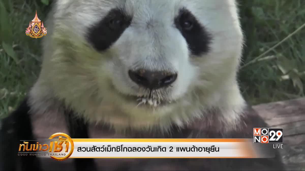 สวนสัตว์เม็กซิโกฉลองวันเกิด 2 แพนด้าอายุยืน