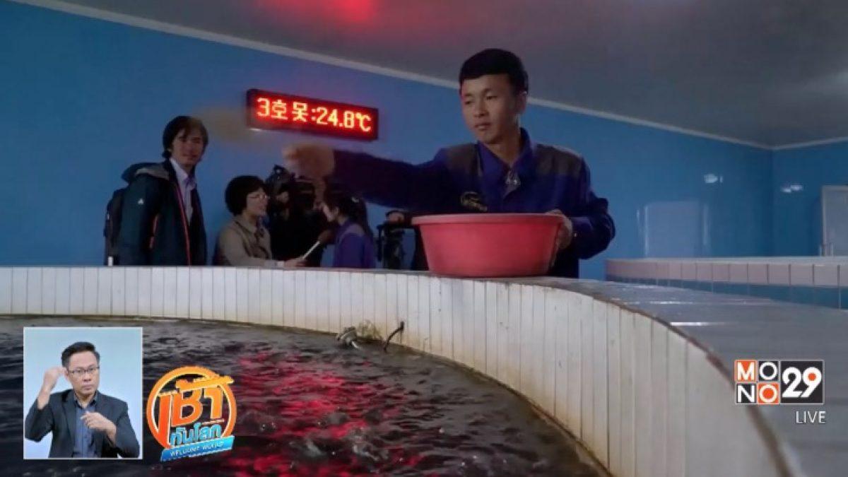 เยี่ยมชมโรงงานเพาะเลี้ยงปลาดุกในเกาหลีเหนือ