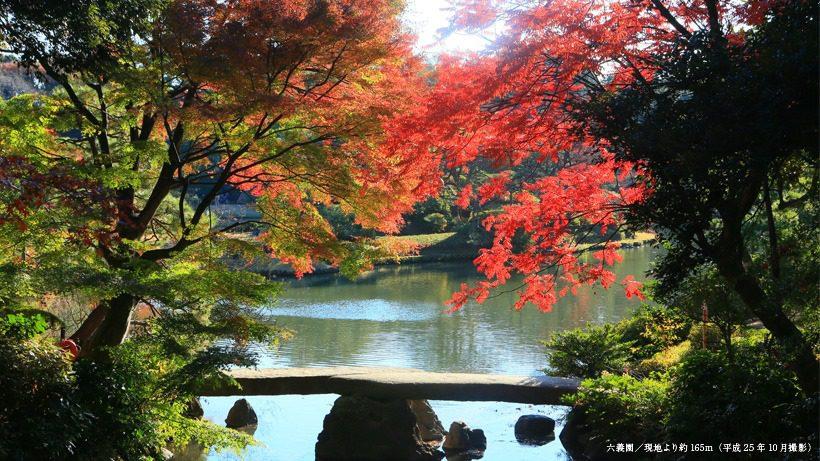 สวนริคุงิเอน (rikugien garden), โตเกียว สถานที่ ชมใบไม้เปลี่ยนสีที่ญี่ปุ่น