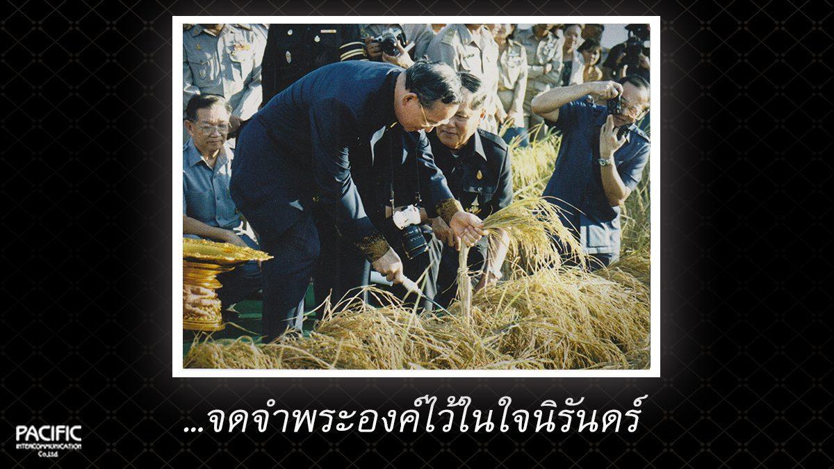 19 วัน ก่อนการกราบลา - บันทึกไทยบันทึกพระชนมชีพ