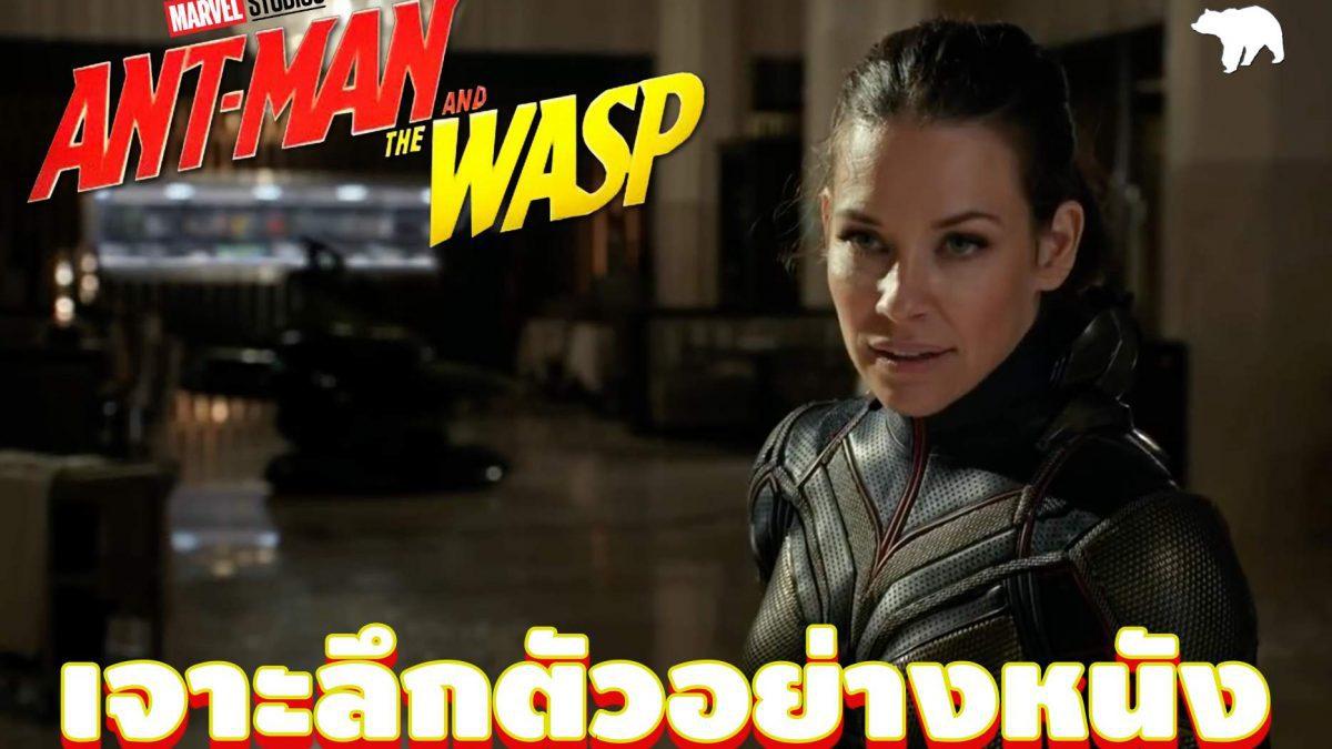 เจาะลึกตัวอย่าง Antman and The Wasp