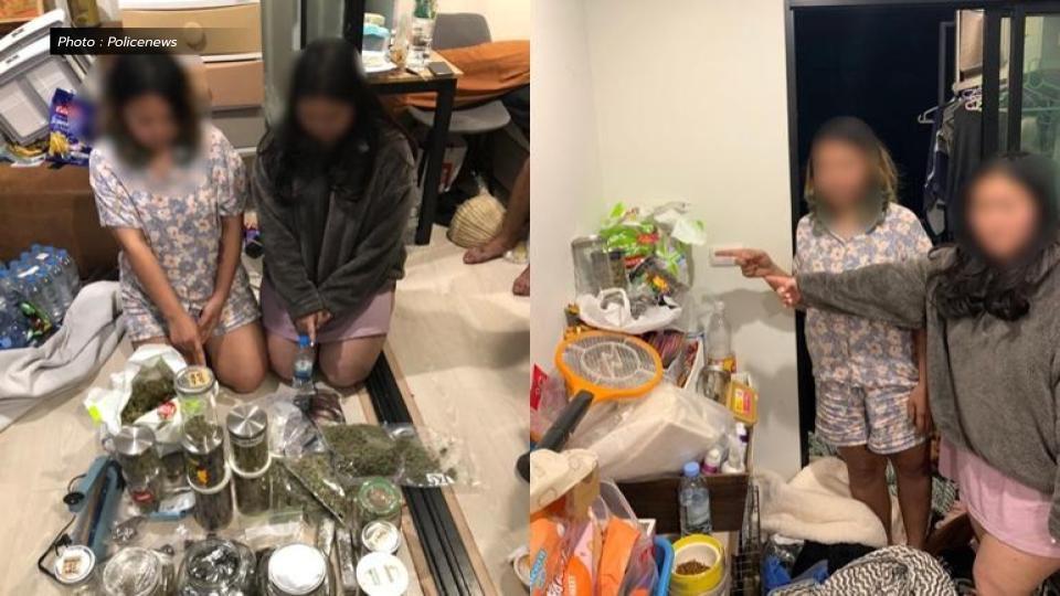 ตำรวจบุกจับ 3 วัยรุ่น ค้าดอกกัญชาแปรรูป ขายทางออนไลน์