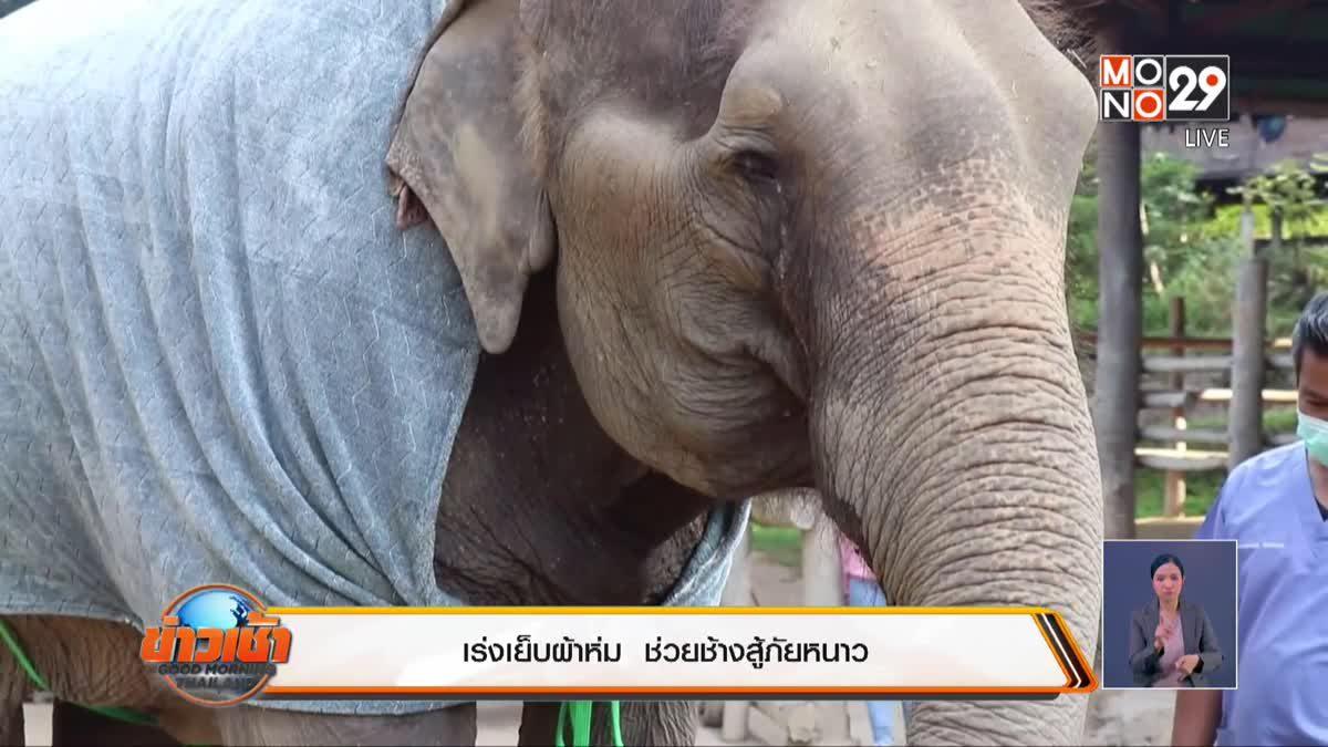 เร่งเย็บผ้าห่ม  ช่วยช้างสู้ภัยหนาว