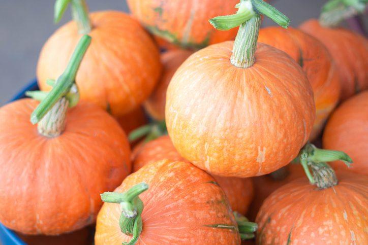 ฟักทองสีส้ม