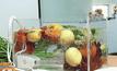 เครื่องล้างผักโอโซน นวัตกรรมเพื่อสุขภาพ