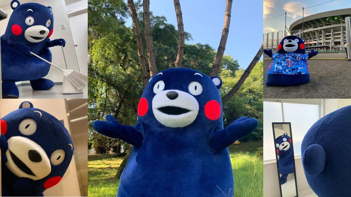 โซคิวท์ คุมะมง เปลี่ยนสีเป็นน้ำเงิน เจแปน บลู  ร่วมเชียร์ โอลิมปิกเกมส์ 2020