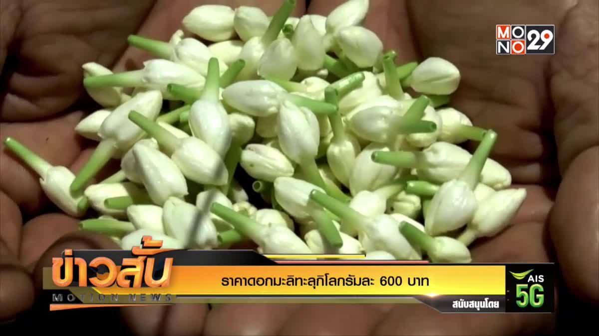ราคาดอกมะลิทะลุกิโลกรัมละ 600 บาท