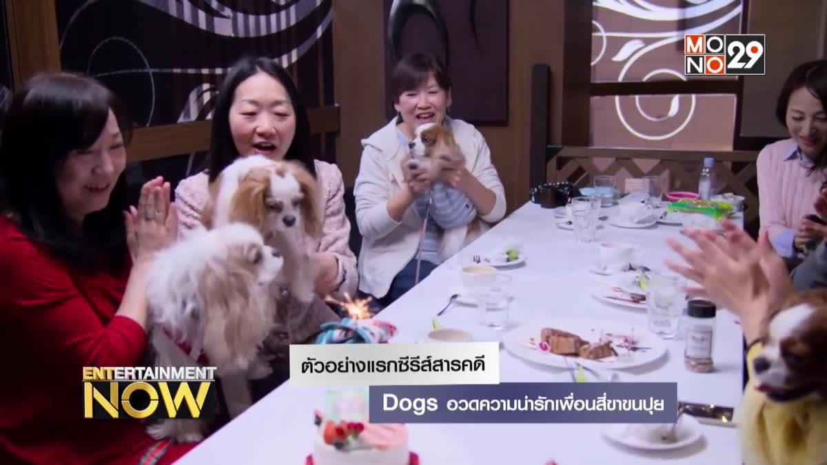 ตัวอย่างแรกซีรีส์สารคดี Dogs อวดความน่ารักเพื่อนสี่ขาขนปุย