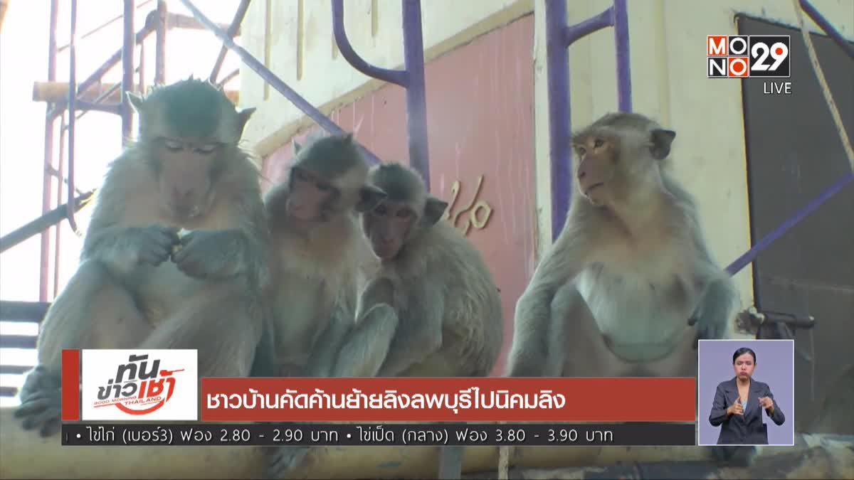 ชาวบ้านคัดค้านย้ายลิงลพบุรีไปนิคมลิง