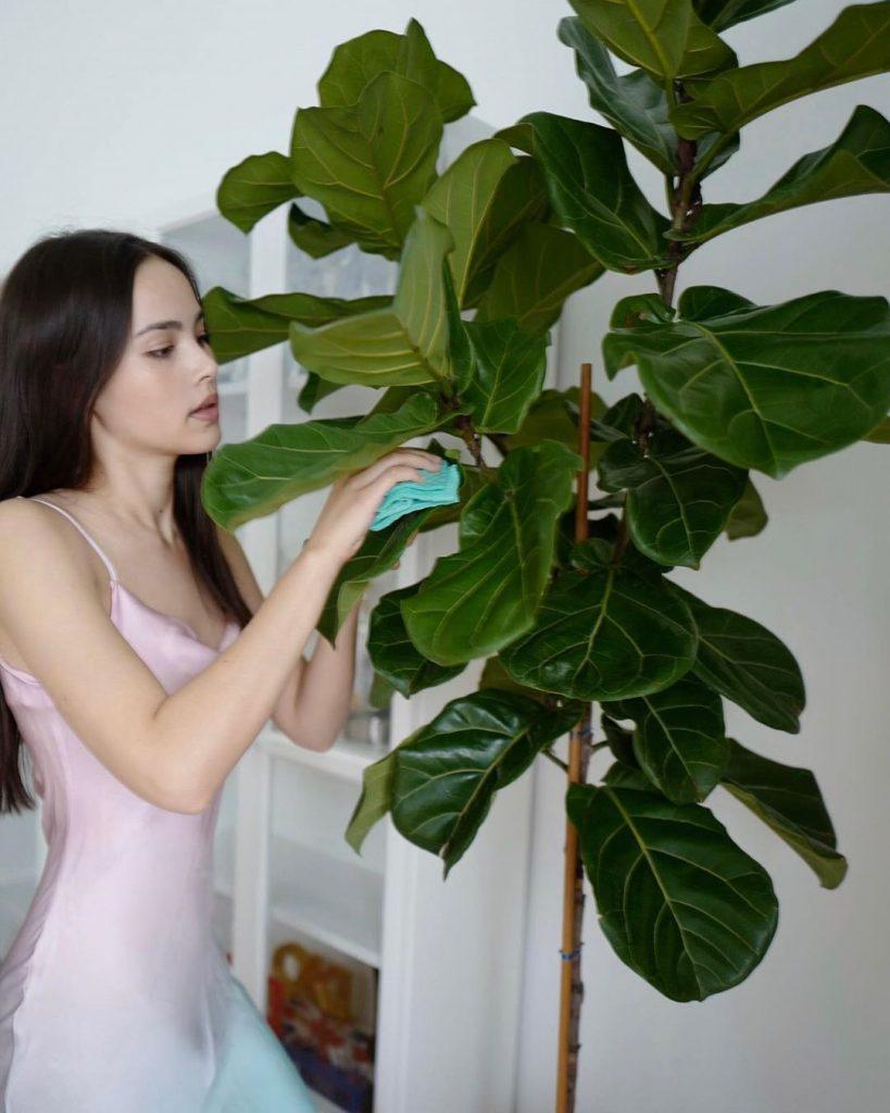 ญาญ่า อุรัสยา โพสต้นไม้ต้นที่ 5 ตอกย้ำความแรงกระแสปลูกต้นไม้