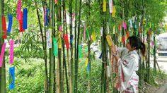 ใส่ชุดยูกาตะ เดินเที่ยวชมงาน เทศกาลทานาบาตะ ที่หมู่บ้านญี่ปุ่น จ.อยุธยา