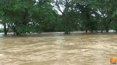พักชำระหนี้ 12 เดือน ช่วยเหลือเกษตรกรโดนน้ำท่วม