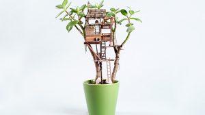 แต่งกระถางต้นไม้ ให้สวยกว่าเดิม ด้วย บ้านต้นไม้จิ๋ว