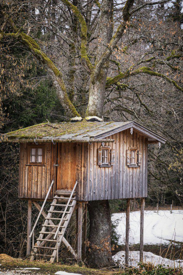 beautiful tree house at a forest