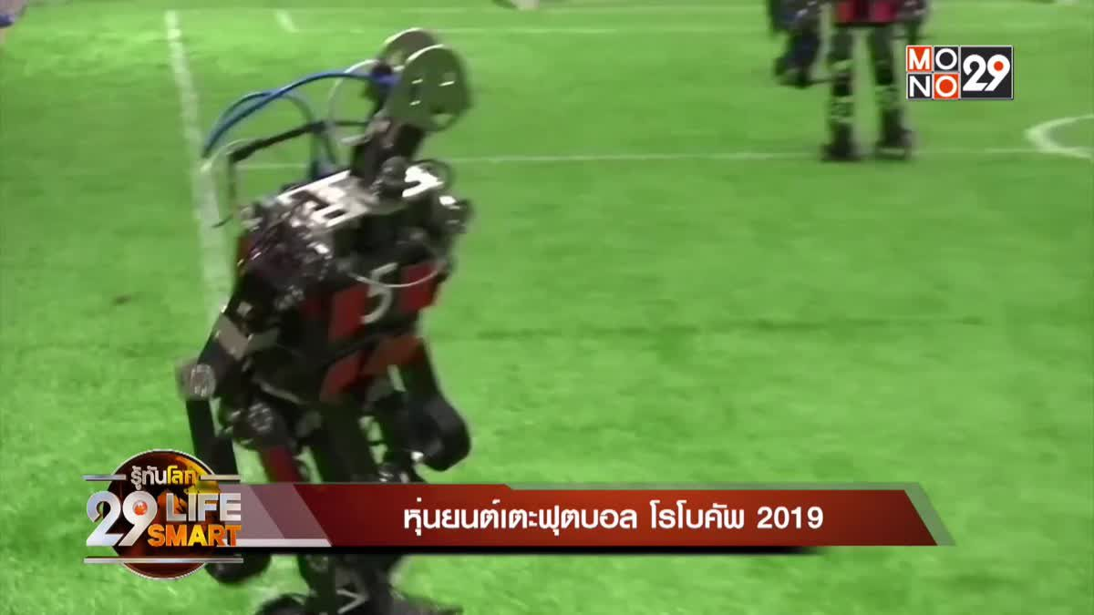29 LifeSmart : Sport Tech หุ่นยนต์เตะฟุตบอล โรโบคัพ 2019