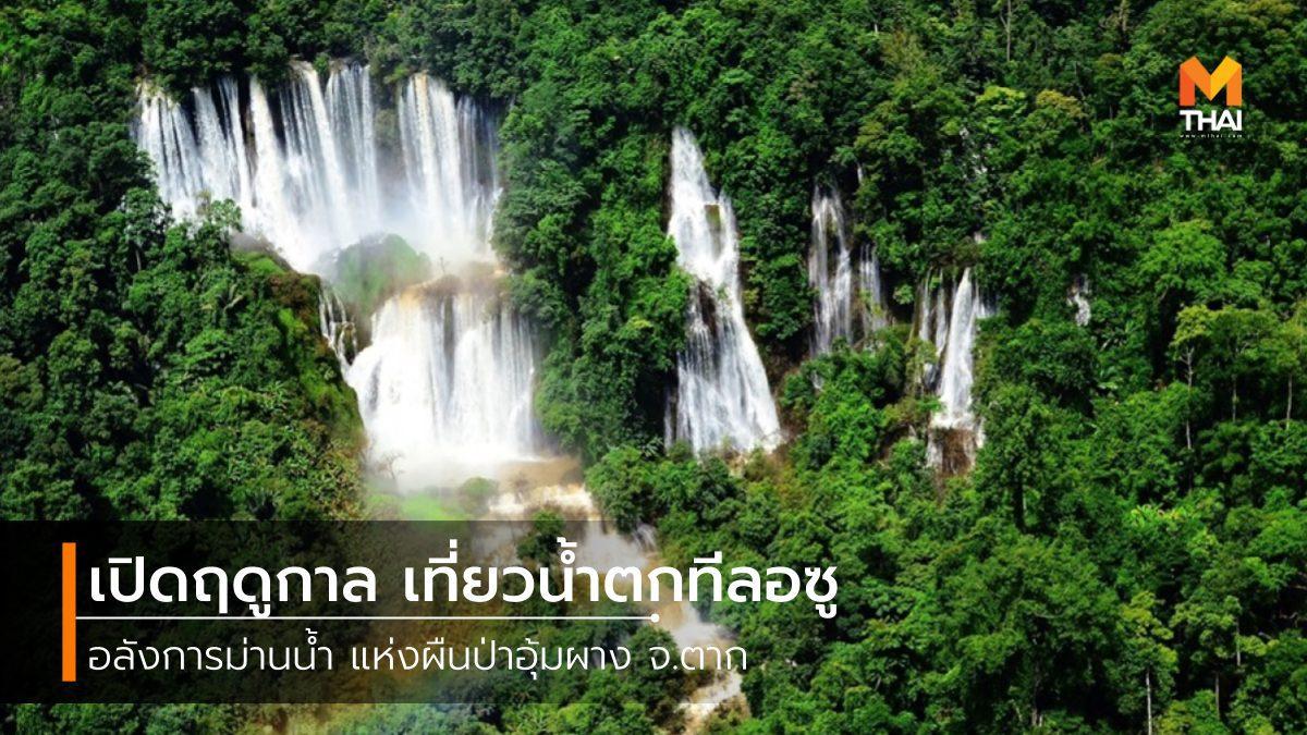 เปิดฤดูกาลเที่ยว น้ำตกทีลอซู อลังการม่านน้ำ แห่งผืนป่าอุ้มผาง จ.ตาก