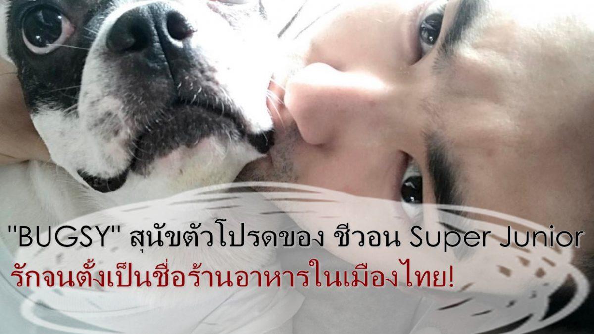 รู้ไหม? BUGSY DOG ร้านฮอทด็อกที่เมืองไทย ของ ชีวอน Super Junior มาจากชื่อหมาตัวโปรด!