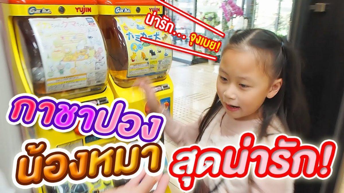 น้องเกรซ หมุนไข่กาชาปองน้องหมาสุดน่ารักจุงเบย!!