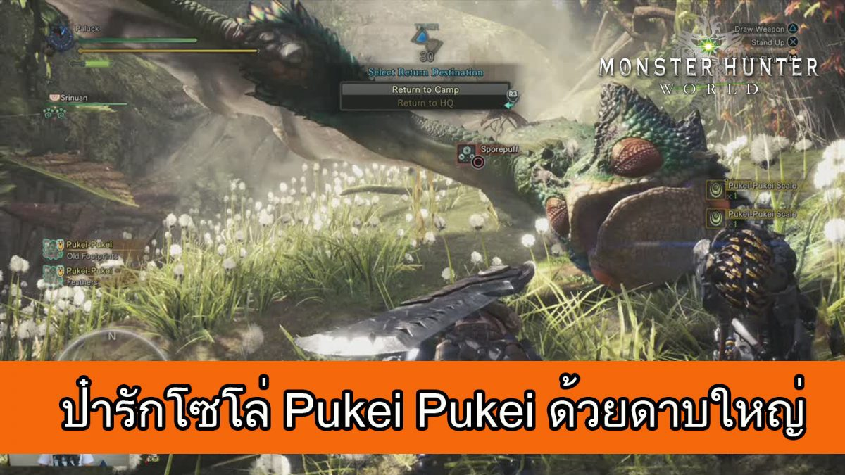 Monster Hunter World : ป๋ารักลุย Pukei Pukei