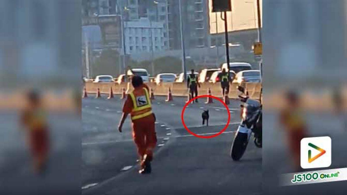 รถติดทั้งอำเภอ เพื่อช่วยเธอตัวเดียวเลยนะรู้ไหม..  (27/10/2019)