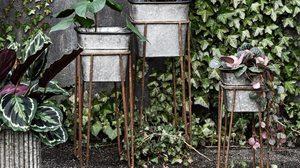 20 ไอเดีย แต่งสวนขนาดเล็ก ให้สวยเรียบง่ายแต่ไม่ Out of Style