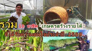 รวม 10 อาชีพ 'เกษตรสร้างรายได้' ที่ได้รับความสนใจประจำปี 2559