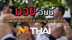 โปรแกรมมวยไทยวันนี้ วันพฤหัสบดีที่ 14 กรกฎาคม 2559