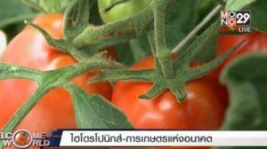 การเกษตรแห่งอนาคต!? การเกษตรแบบไฮโดรโปนิกส์