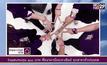 สายข้อมือสีม่วงเฉลิมพระเกียรติ สมเด็จพระเทพฯ