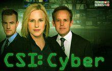 CSI : Cyber Season 2 หน่วยสืบสวนสะท้านไซเบอร์ ปี 2