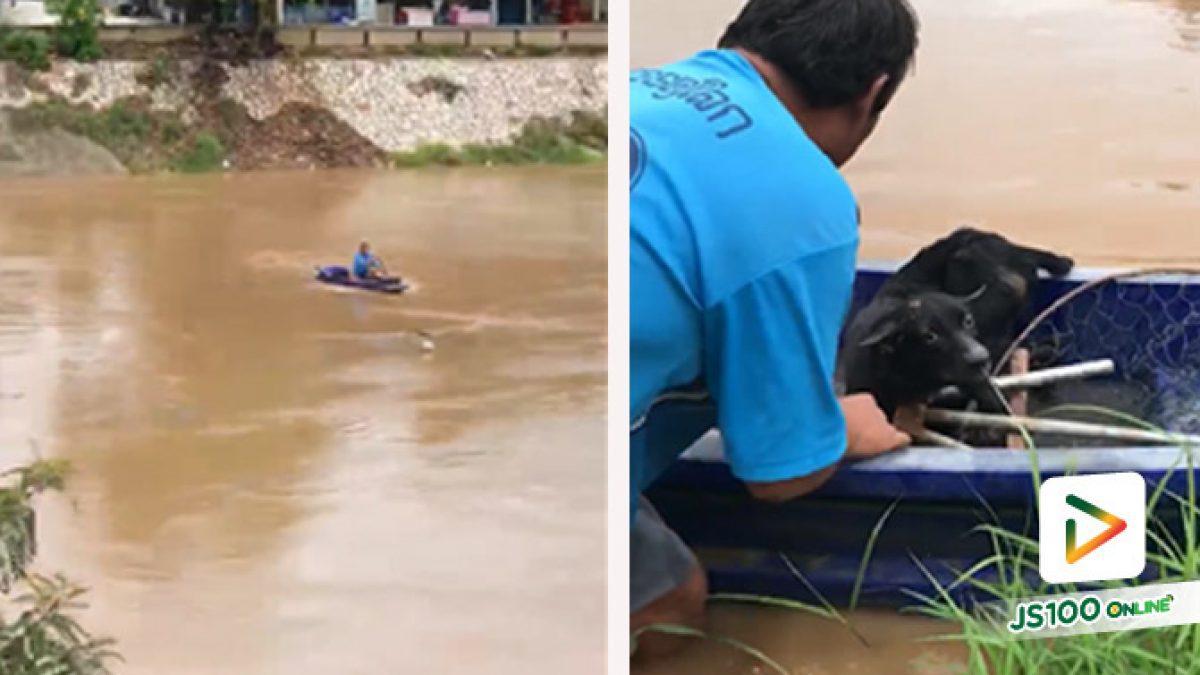 เจ้าของรับกลับบ้านแล้ว! สุนัขลอยตามน้ำ ชาวบ้านพายเรือไม่คิดชีวิต ช่วยเหลือกลับขึ้นฝั่ง
