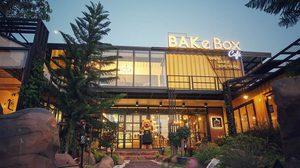 BAKe Box Cafe คาเฟ่น้องใหม่ในกาฬสินธุ์ Go Green Cafe แห่งแรกของจังหวัด