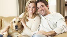 9 เหตุผลดีๆ ที่คนเป็นแฟนกันควรเลี้ยงสัตว์ด้วยกัน