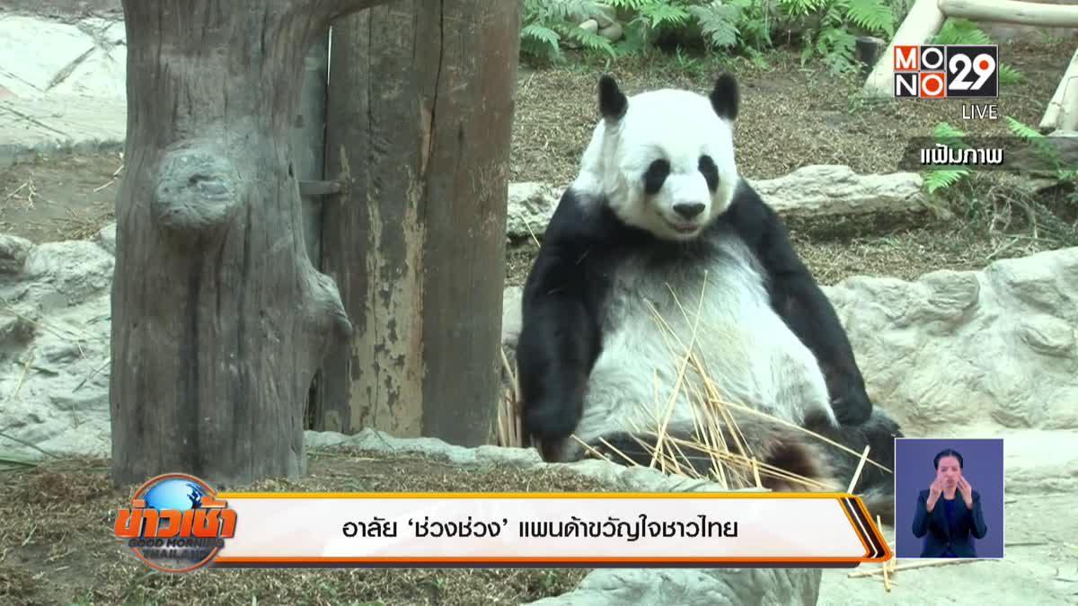 'ช่วงช่วง'แพนด้าขวัญใจชาวไทยตายแล้ว